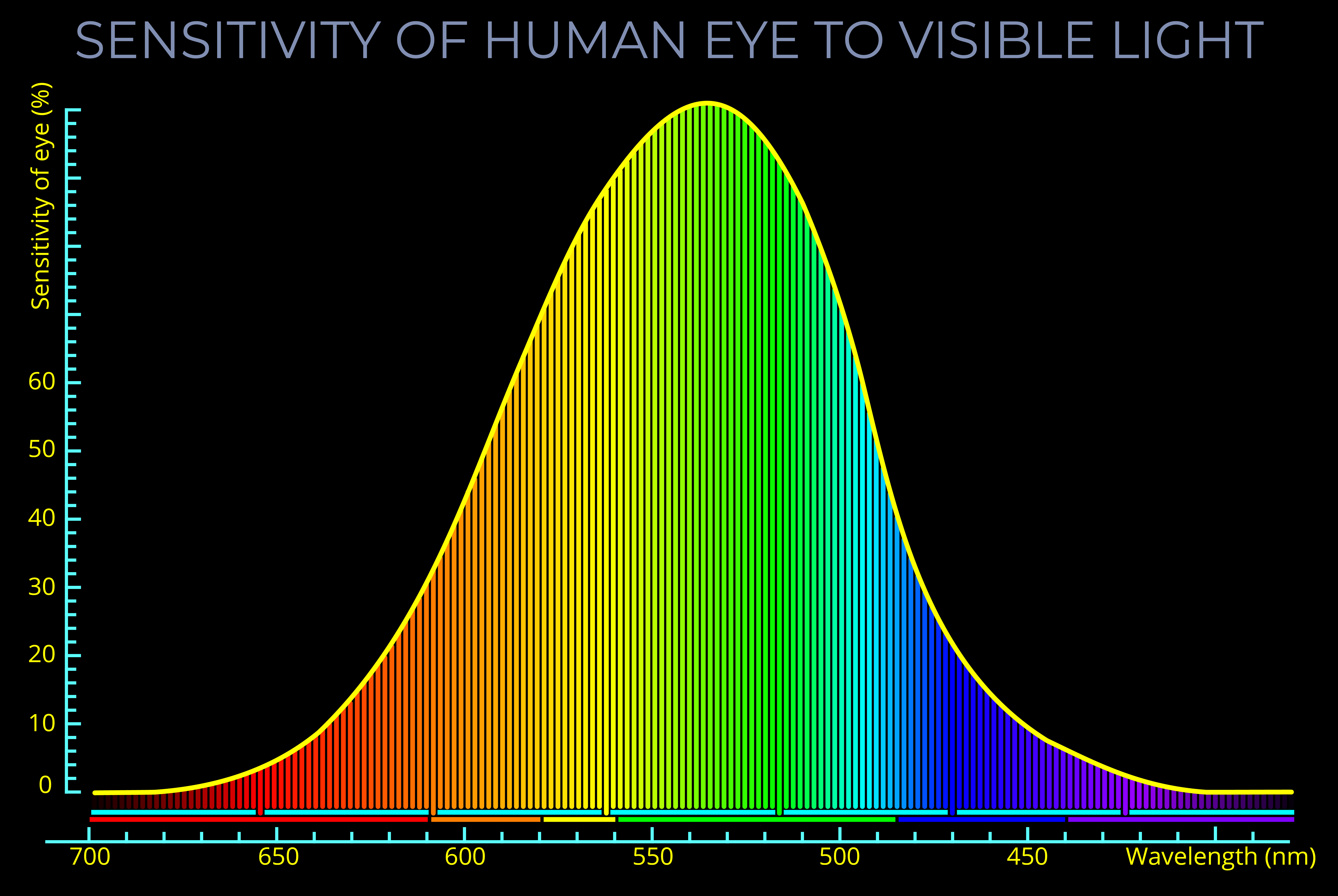 Seeing more Archives - Light Colour Vision